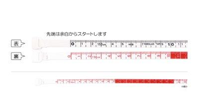 画像2: オートメジャー2m